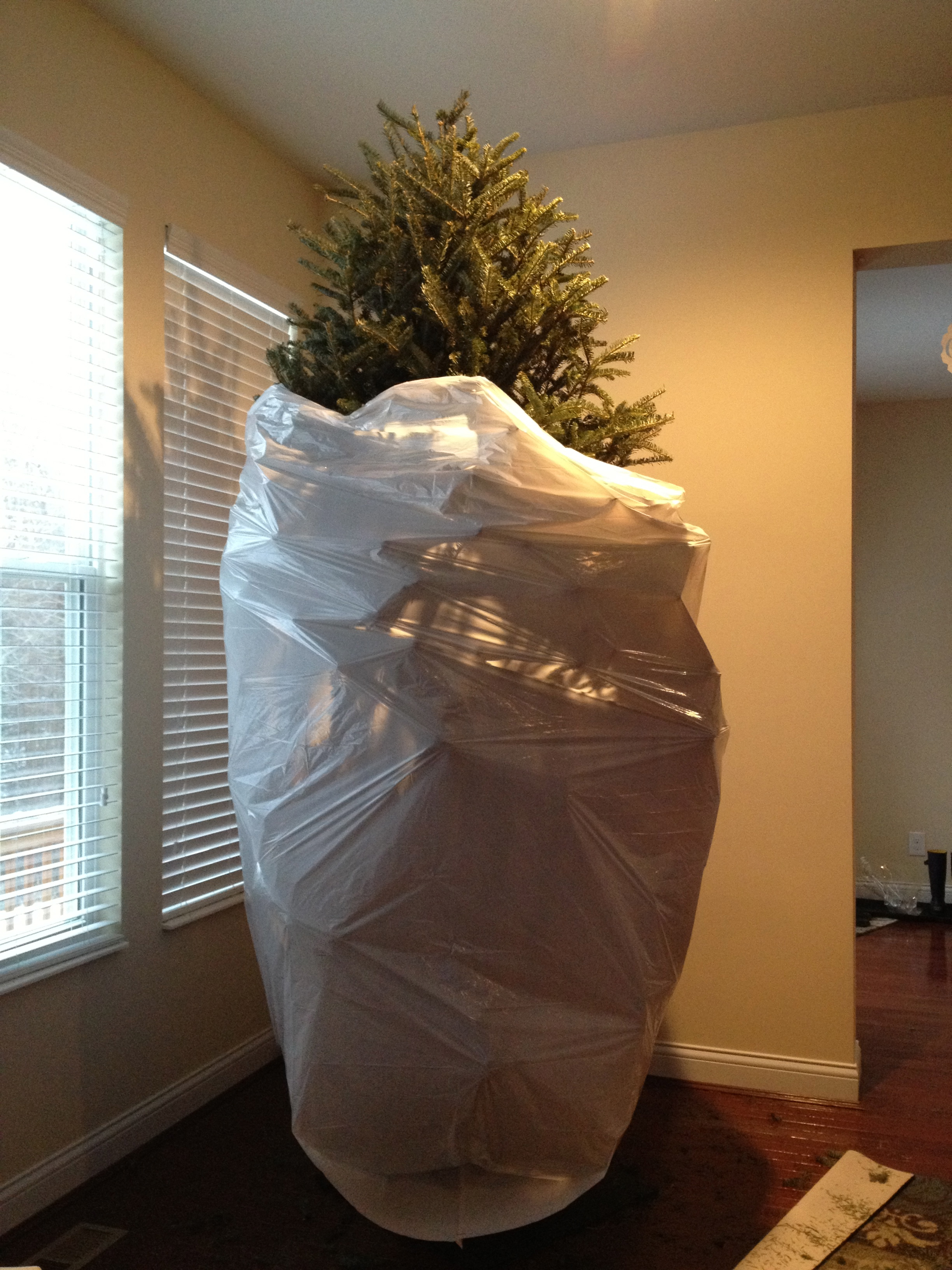 bundled tree -- TwoPurpleCouches.com