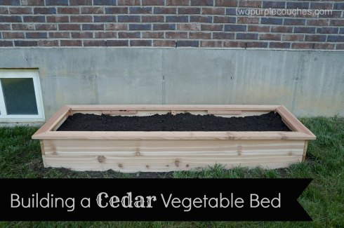 cedar raised vegetable bed